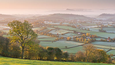 Distant Glastonbury Tor and Somerset Levels from the Mendip Hills, Somerset, England, UK. November 2013.