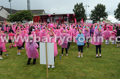 Pink Ribbon Walk 2013