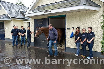 CoolmoreStud-7