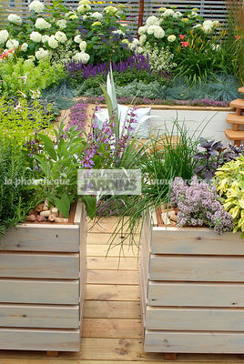 Aromatic plant, Border with flowers, Chives, Condiment, Container, garden designer, Terrace, Thyme, Window box, Contemporary Terrace, Digital