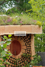 Bizarre, Garden construction, Garden shed, Wood, Digital, Green roof, Thrift