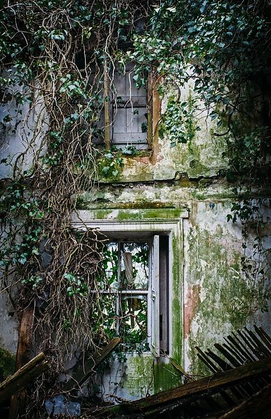 Laois_abandoned_house_windows