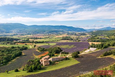 High angle view of valley with lavender fields, Sault, Provence