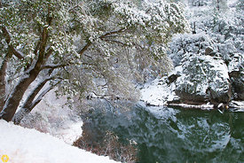 Winter Along the Feather River #3