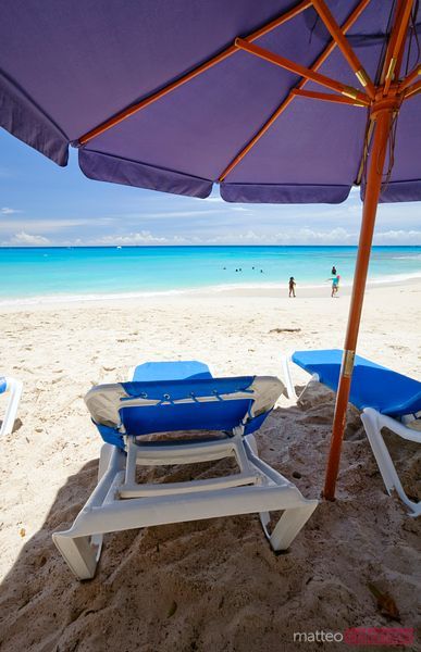 Sunchairs and umbrella on Barbados beach