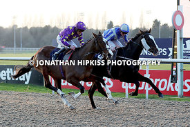 WOLVERHAMPTON RACES - HORSE RACING