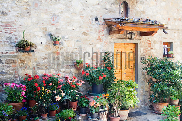 Potted Plants and Doorway, Chianti Region, Tuscany, Italy