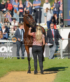 Jonelle Richards and FLINTSTAR - The final vets inspection (trot up),  Land Rover Burghley Horse Trials, 8th September 2013.