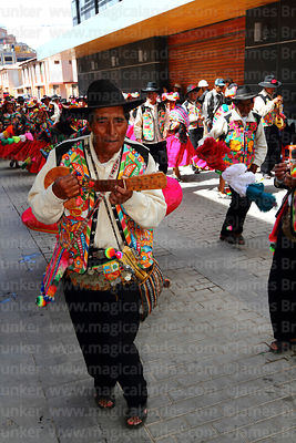 Musicians with Qaswas los Cinco Claveles dance group from Capachica playing round charangos, Virgen de la Candelaria festival...