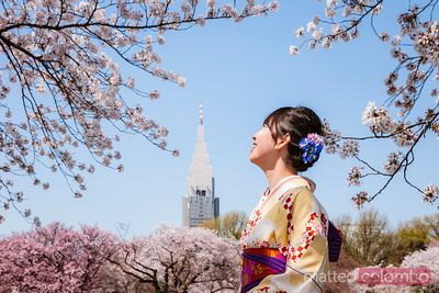 Woman in kimono enjoying cherry blossom, Japan