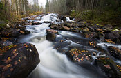Rutakoski rapids in Leivonmäki National Park