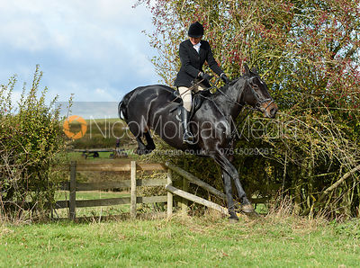 Jane Herrick jumping a hedge near Little Dalby. Quorn Hunt Opening Meet 2018