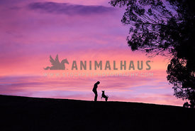 silhouette of woman and her dog facing each other