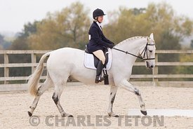 West Wilts Unaffiliated Dressage on Saturday 22nd October 2016.