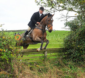 The Cottesmore Hunt at Toft, 31-Oct-13.
