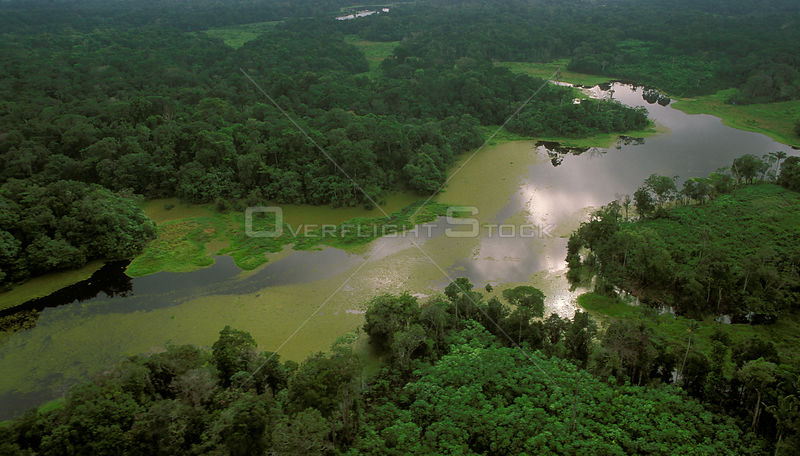 Small tributary of Amazon river during the rainy season. Brazil, 1994.