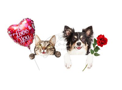 Valentine Cat and Dog Hanging Over Sign