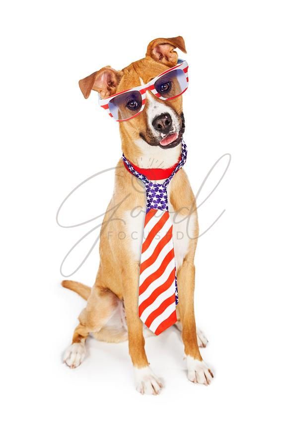 Patriotic American Dog Wearing Tie and Glasses