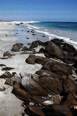 Black rocks and white sand beach , Llanos de Challe National Park , Region III , Chile