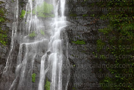 Close up of San Felix waterfall, near Coroico, North Yungas province, Bolivia
