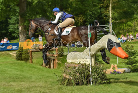 Andrew James and BENELUX CASINO ROYALE, Equitrek Bramham Horse Trials 2018