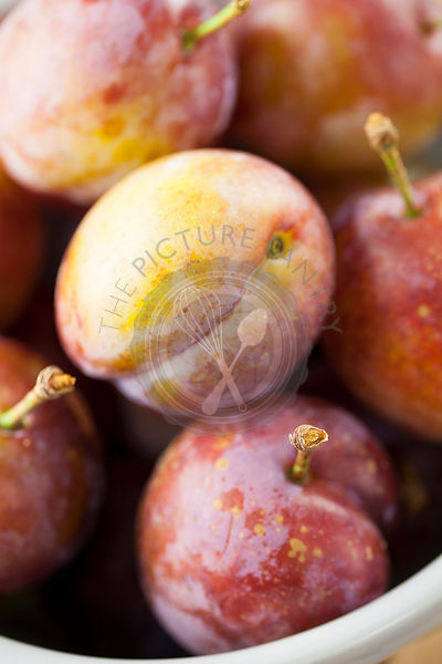 Opal Plums Close Up