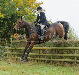 Hilary Butler jumping a hedge near Wilson's - The Cottesmore at Langham.