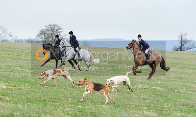 Angus Smales at Wilson's. The Cottesmore Hunt at The Priory