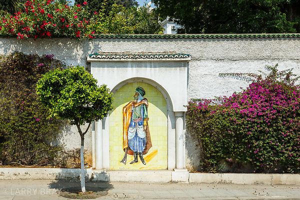 Garden wall with tiled art in street in Algiers, Algeria, North Africa