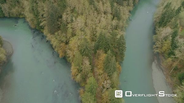 High fly by looking down at oxbow area on Hoh River Washington State