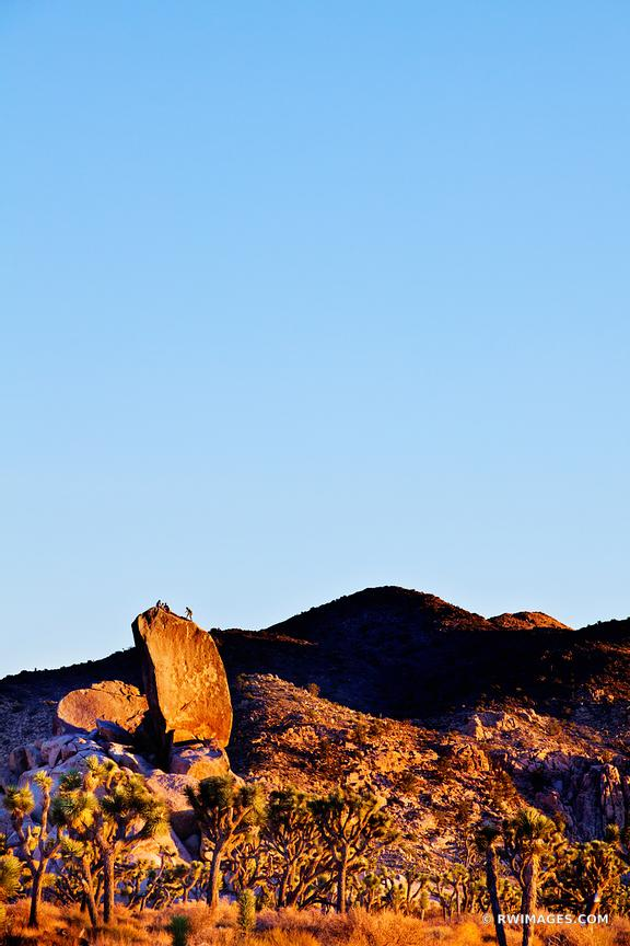 ROCK CLIMBING JOSHUA TREE NATIONAL PARK COLOR VERTICAL