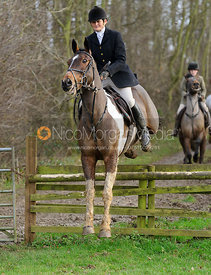Bee Bell jumping a hunt jump at Brick Hills