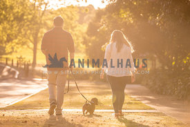 Couple walks with Sausage Dog on a Sunlit Afternoon