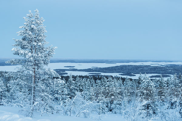 View on Lake Inari