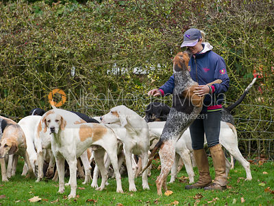 Kelly Phillips - The Quorn Hunt at John O' Gaunt 9/11/12