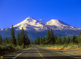 Shasta Morning #3