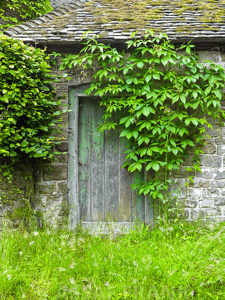 Door of an old house in village