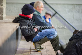 27th October, 2015.Eoin Clarke from Bailieborough, County Cavan pictured at Ballyjamesduff Mart, County Cavan. Photo:Barry Cr...