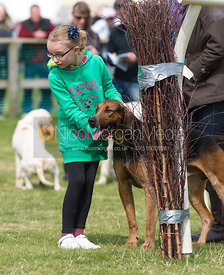 Young racegoers meet the Quorn Hounds - The Quorn at Garthorpe 21st April 2013.