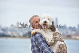 adult caucasion man holding very large sheepadoodle puppy