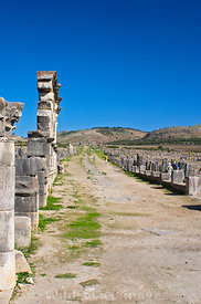 Looking east down the Decumanus past the arches, Volubilis, Morocco; Portrait