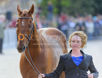 Colleen Rutledge and SHIRAZ - Mitsubishi Motors Badminton Horse Trials 2013
