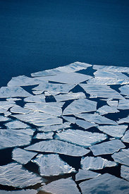 Aerial view of sea ice floe breaking up in summer, Admiralty Inlet, Canadian High Arctic, June 2000