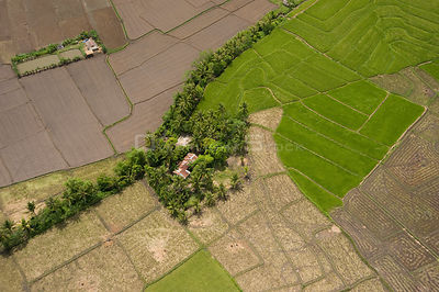 Aerial view of rice paddy fields, near Mt. Isarog, Camarines Sur, Luzon, Philippines 2008