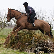 15th February 2015 Jumping practice at South Farm