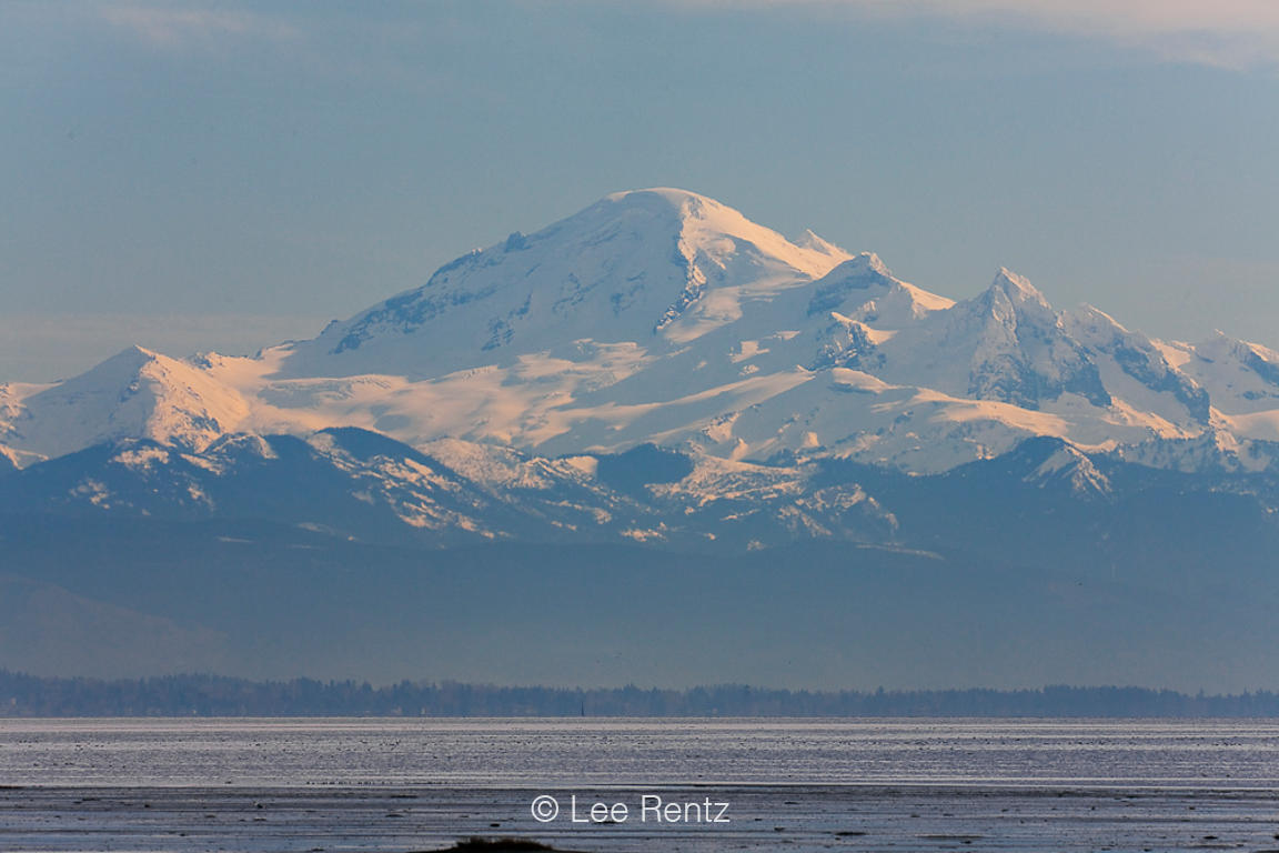 Mt. Baker Viewed across Boundary Bay from British Columbia