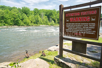 Visitors Warning Sign & Geese- Youghiogheny River At Ohiopyle, PA