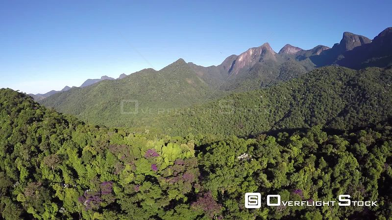 Aerial shot over an area of the Atlantic Forest, Reserva Ecologica de Guapiacu, Rio de Janeiro, Brazil, 2015.