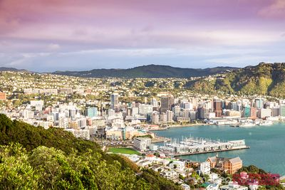 Wellington city centre from lookout at sunrise, New Zealand