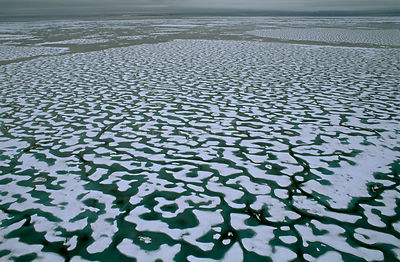 Aerial view of sea ice melting, creating patterns over spring sea surface, Lancaster sound, Canadian Arctic